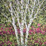 Birch with Raspberry Foliage - Alison Cowan
