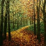 Mellow Yellow Path - Alison Cowan